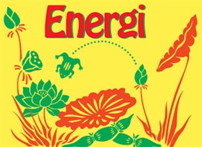 Hälsoserien : Energi (e-bok) av Nicotext Förlag