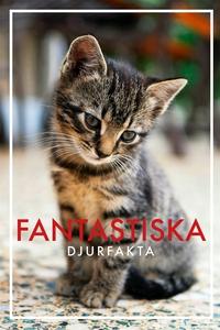 Fantastiska djurfakta (PDF) (e-bok) av Nicotext