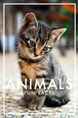 Animals Fun Facts (PDF)