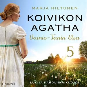Vainio-Tanin Elsa (ljudbok) av Marja Hiltunen