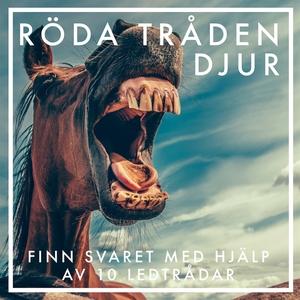Röda tråden djur (e-bok) av Nicotext Förlag