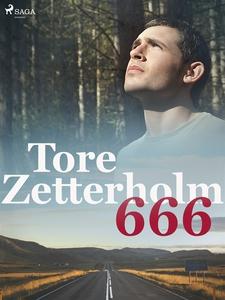 666 (e-bok) av Tore Zetterholm