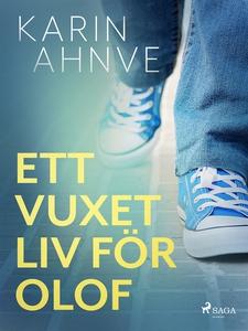 Ett vuxet liv för Olof (e-bok) av Karin Ahnve