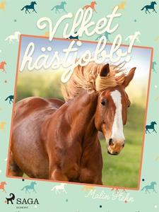 Vilket hästjobb! (e-bok) av Malin Stehn