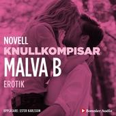 Knullkompisar : en novell ur Begär