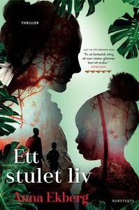 Ett stulet liv (e-bok) av Anna Ekberg