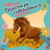 Tjejerna på ridklubben 9 - Skattkartan