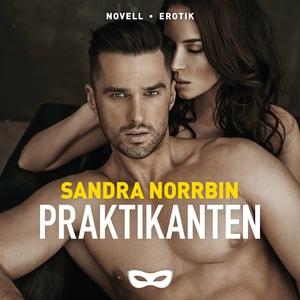 Praktikanten (ljudbok) av Sandra Norrbin