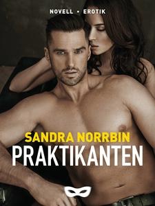 Praktikanten (e-bok) av Sandra Norrbin