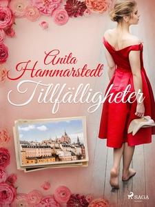 Tillfälligheter (e-bok) av Anita Hammarstedt