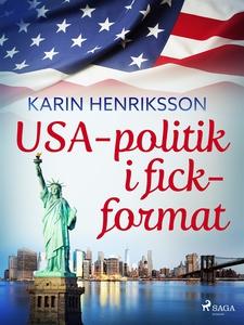 USA-politik i fickformat (e-bok) av Karin Henri