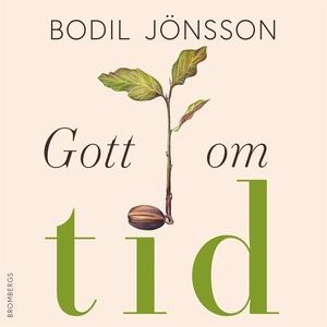 Gott om tid (ljudbok) av Bodil Jönsson
