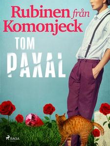 Rubinen från Komonjeck (e-bok) av Tom Paxal