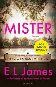 Mister (e-bok) av