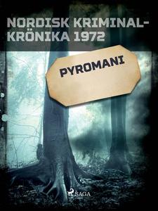Pyromani (e-bok) av Diverse författare