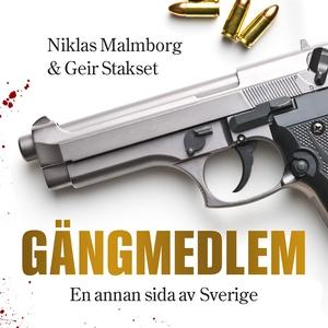 Gängmedlem : en annan sida av Sverige (ljudbok)