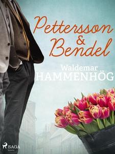 Pettersson & Bendel (e-bok) av Waldemar Hammenh