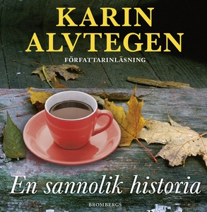 En sannolik historia (ljudbok) av Karin Alvtege
