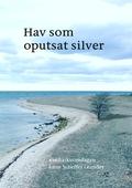 Hav som oputsat silver: #enhaikuomdagen