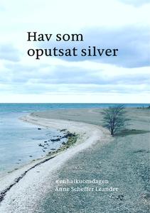 Hav som oputsat silver: #enhaikuomdagen (e-bok)