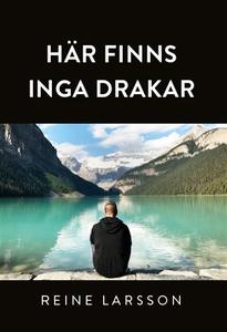 Här finns inga drakar (e-bok) av Reine Larsson