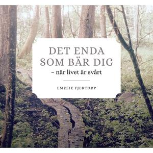 DET ENDA SOM BÄR DIG (e-bok) av Emilie Fjertorp