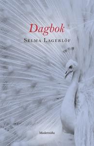 Dagbok (e-bok) av