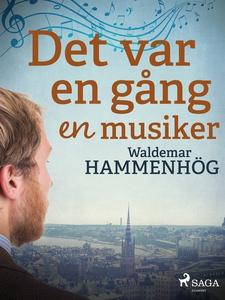 Det var en gång en musiker (e-bok) av Waldemar