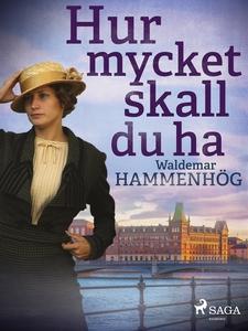 Hur mycket skall du ha (e-bok) av Waldemar Hamm