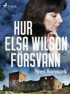 Hur Elsa Wilson försvann (e-bok) av Sven Sörmar