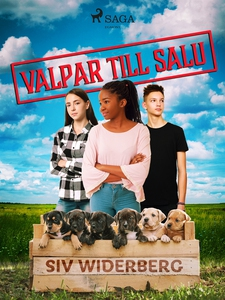 Valpar till salu (e-bok) av Siv Widerberg