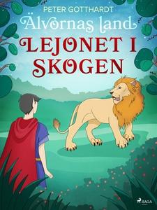 Älvornas land 2: Lejonet i skogen (e-bok) av Pe