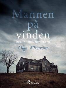 Mannen på vinden och andra noveller (e-bok) av