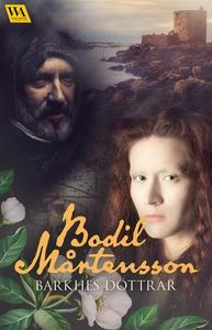 Barkhes döttrar (e-bok) av Bodil Mårtensson