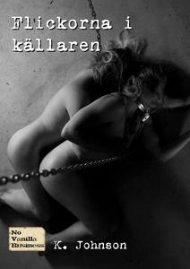Flickorna i källaren (e-bok) av K. Johnson