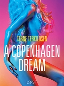 A Copenhagen Dream - erotic short story