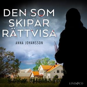 Den som skipar rättvisa (ljudbok) av Anna Johan