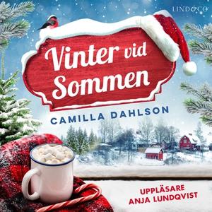 Vinter vid Sommen (ljudbok) av Camilla Dahlson