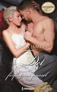 Det förflutnas pussel (e-bok) av Sophia James