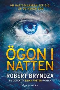 Ögon i natten (e-bok) av Robert Bryndza