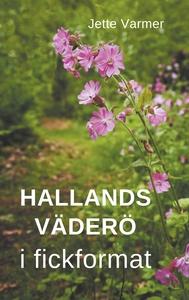 Hallands Väderö i fickformat (e-bok) av Jette V