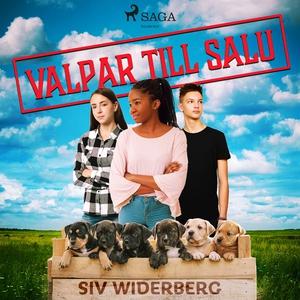 Valpar till salu (ljudbok) av Siv Widerberg