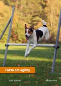 Fakta om agility