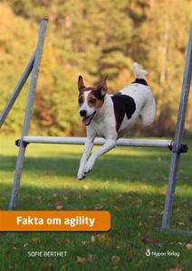 Fakta om agility (ljudbok) av Sofie Berthet