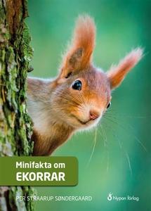 Minifakta om ekorrar (ljudbok) av Per Straarup
