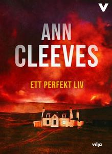 Ett perfekt liv (ljudbok) av Ann Cleeves