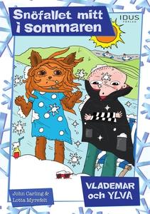 Snöfallet mitt i sommaren (e-bok) av John Carli
