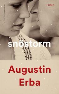 Snöstorm (e-bok) av Augustin Erba