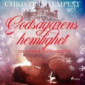 Godsägarens hemlighet - en erotisk julberättelse