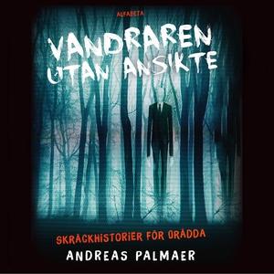 Vandraren utan ansikte (ljudbok) av Åsa Anderbe